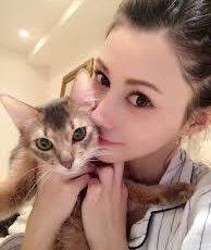 ダレノガレ明美 猫 種類