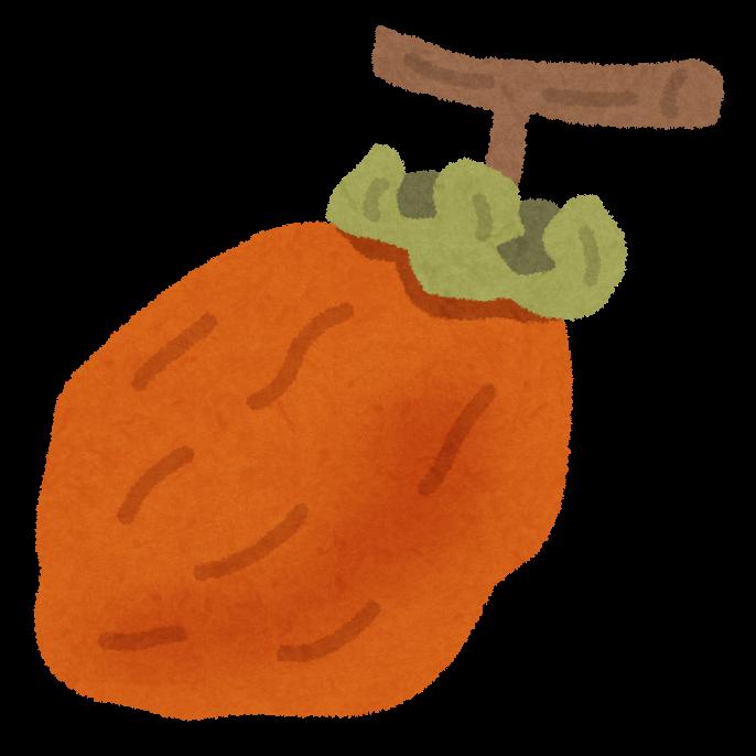 ドライ,柿,栄養