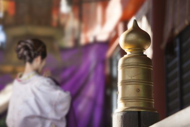 明治神宮,初詣,お賽銭