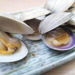 青空レストラン,熊本,ハマグリ,通販,お取り寄せ,購入方法,ネット注文