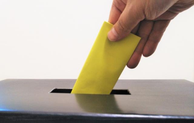 ゆたぼんのパパ,当選,可能性,中村幸也氏,衆議院選出馬,話題作り