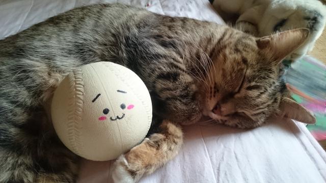 渡辺翔太,寝る