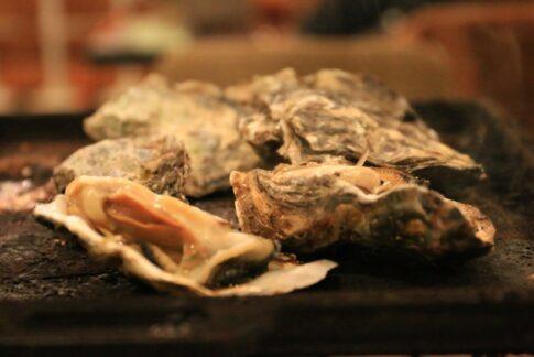 岩牡蠣夏珠,なつみ,食べられる伊根のお店,場所,アクセス方法