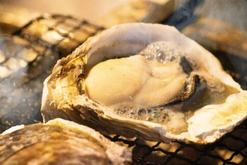 岩牡蠣夏珠,通販,お取り寄せ,購入方法,ネット注文方法,販売店